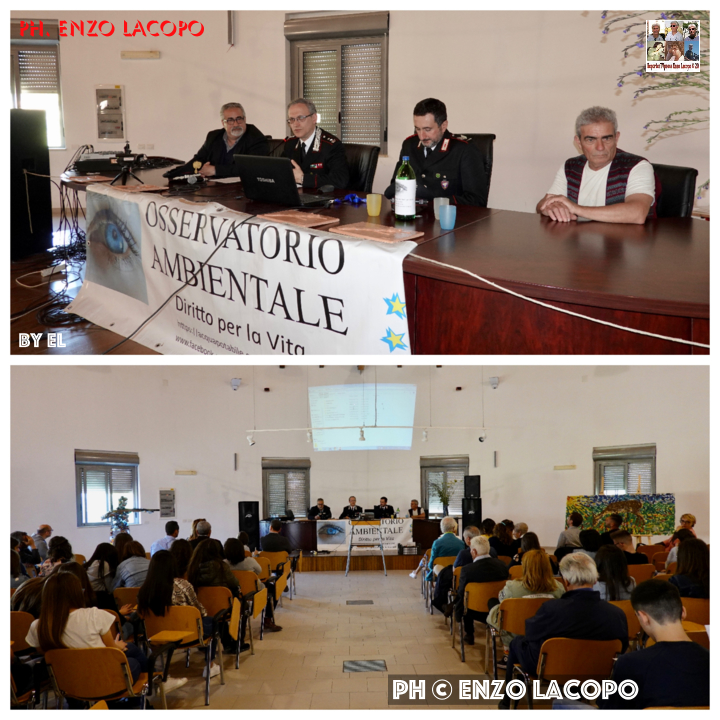 Siderno Liceo Artistico
